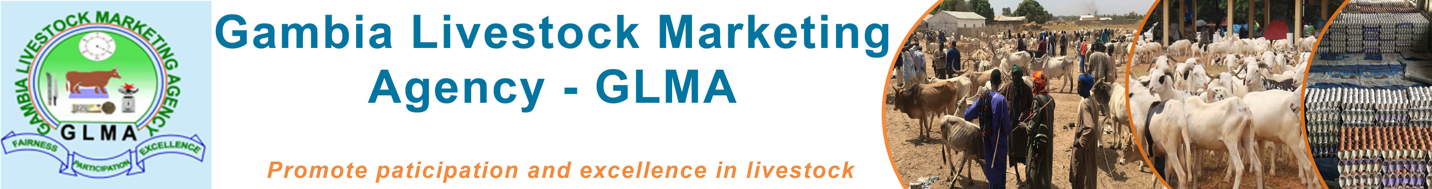 Gambia Livestock Marketing Agency